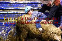 170203 Bulls & Barrels - Fr - Mutton Bustin